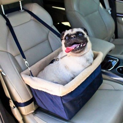 Devoted Doggy Seat
