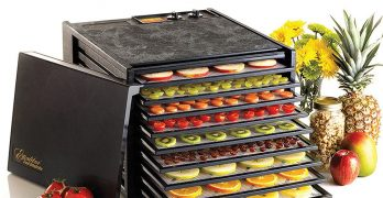 Excaliber Electric Tray Food Dehydrator with 9-Trays, 3926TB