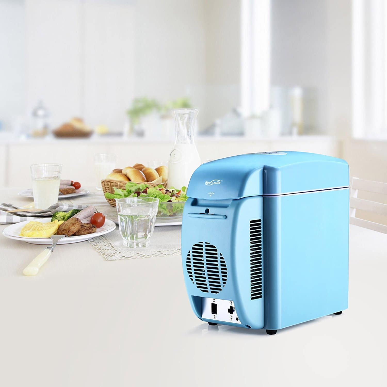 Mini Fridge Cooler and Warmer