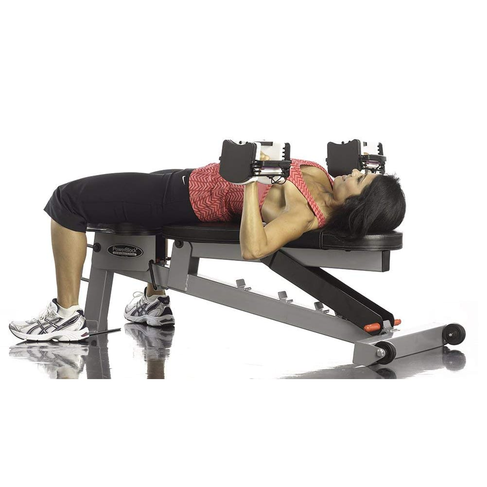 Super Top 10 Best Workout Benches In 2019 Reviews Buyers Guide Dailytribune Chair Design For Home Dailytribuneorg