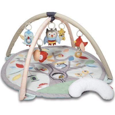 Skip hop Baby Treetop friends activity gym