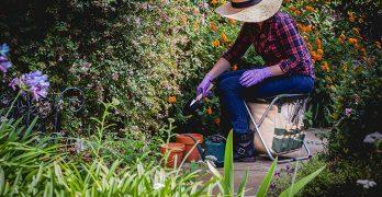 Garden Tools Sets