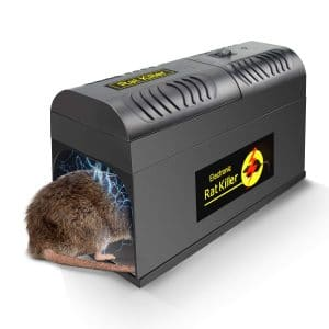 Petcabe Rodent Zapper