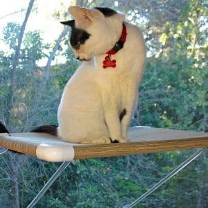 Ultimate Cat Perch –