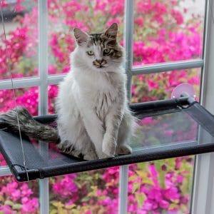 Monkeen Cat Window Perch Hammock