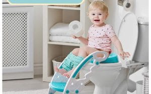 toilet ladder seat