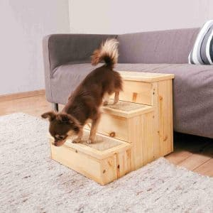 The Trixie Wooden Pet Stairs